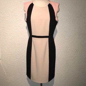 Tahari Arthur S. Levine Colorblock Dress